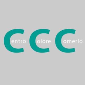 Centro Colore Comerio srl